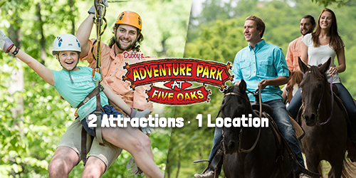 Ad - Adventure Park at Five Oaks: Click to visit website