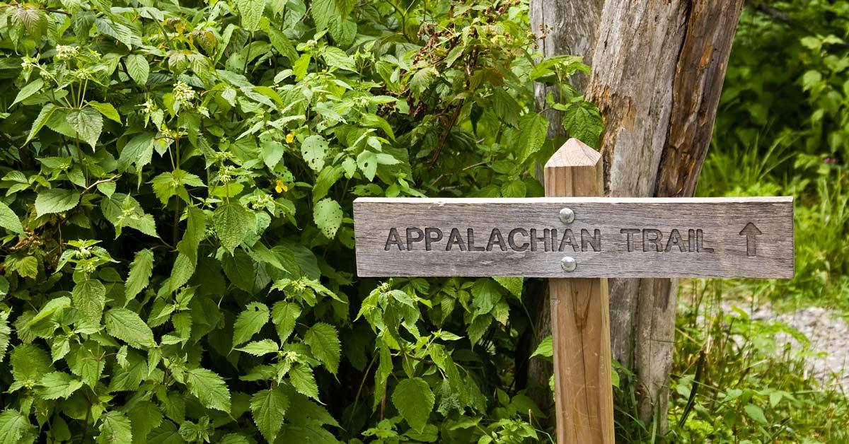 Appalachian Trail Smoky Mountains Segment