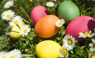 Top Easter Activities in Pigeon Forge: Click to read more.
