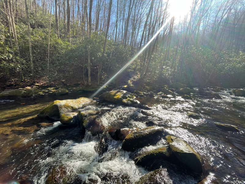 Panther Creek Trail