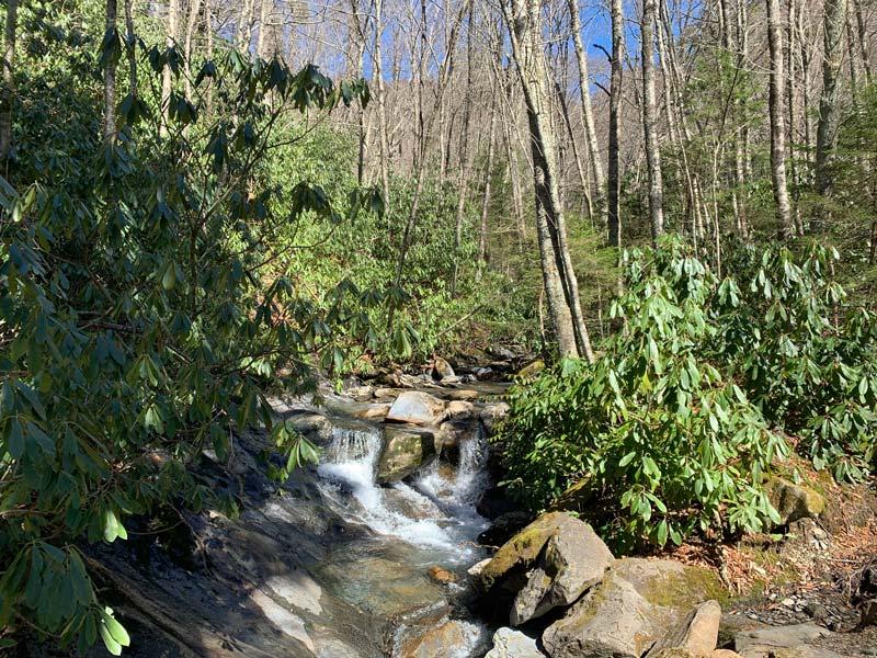 stream on Alum Cave Trail