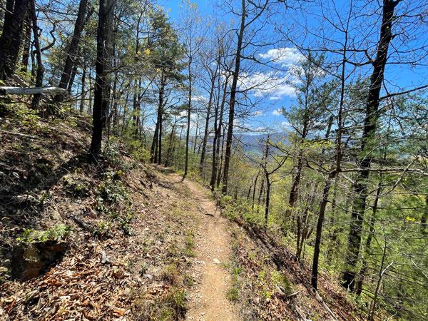 Chestnut Top Trail
