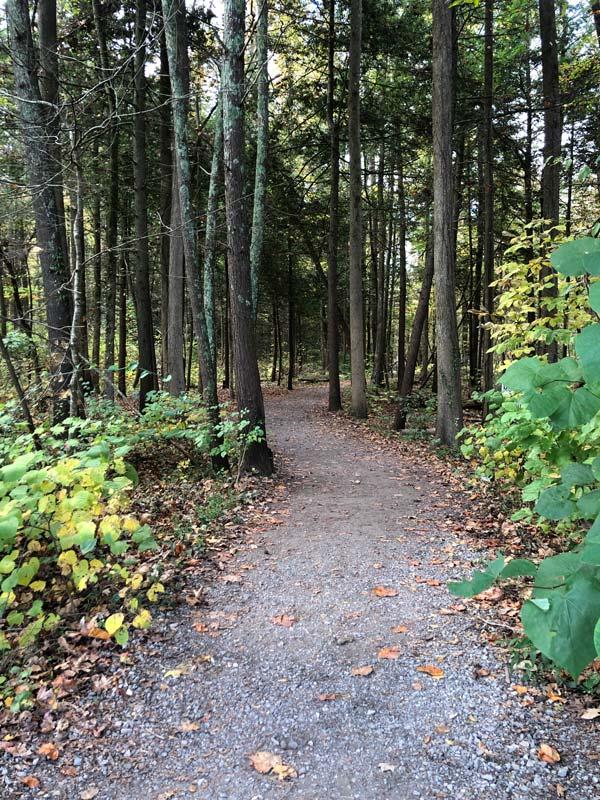 Gatlinburg Trail