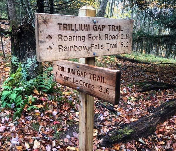 Trillium Gap Trail (Grotto Falls, Mt. LeConte)
