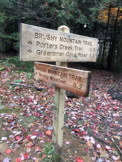 Brushy Mountain Trail (Mt. LeConte)