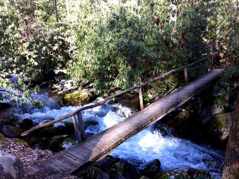Kephart Prong Trail