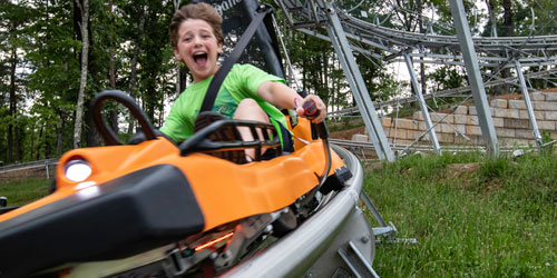 Tennessee Mountain Coasters: Click to visit page.