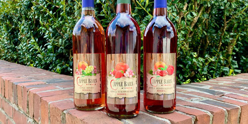 Rocky Top Wine Trail: Click to visit page.