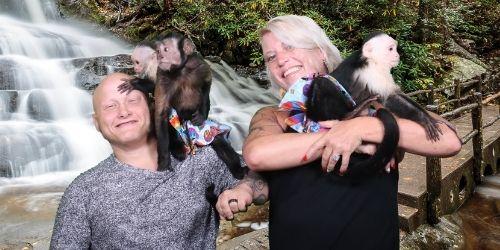 Three Monkeys Photo Emporium: Click to visit page.