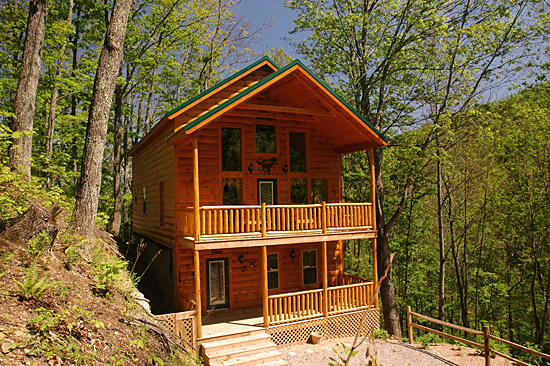 Premier lodging cabin rentals for Premier smoky mountain cabin rentals
