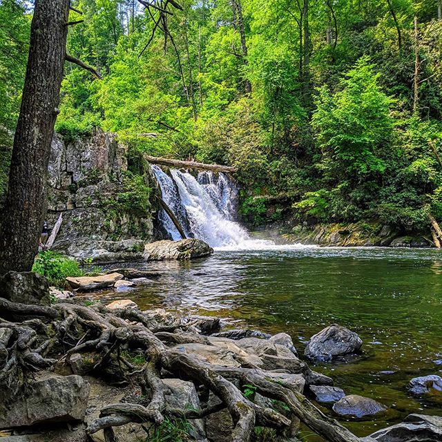 Abrams Falls from Instagram