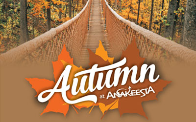 Autumn At Anakeesta: Click for event info