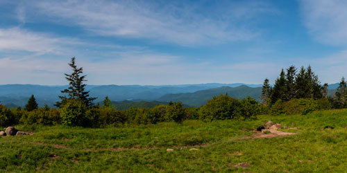Forney Ridge Trail to Andrews Bald: Click to visit page.