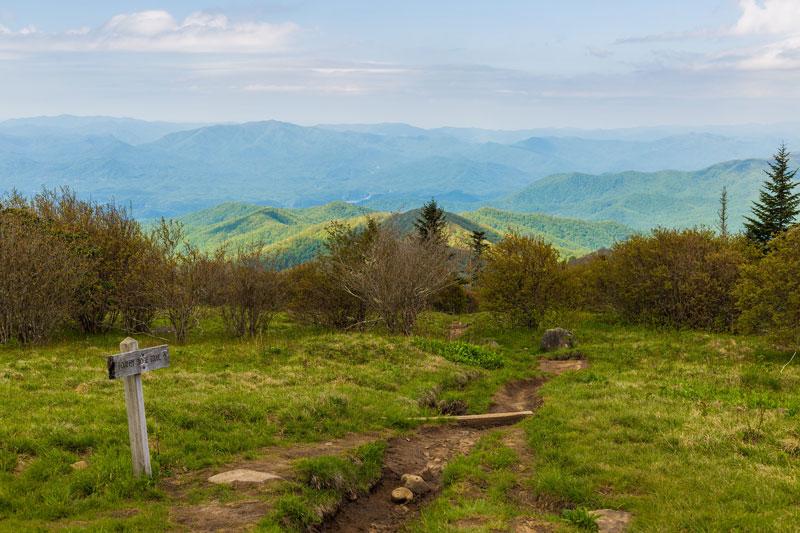 Andrews Bald via Forney Ridge Trail
