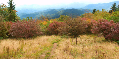 Andrews Bald via Forney Ridge Trail: Click to visit page.