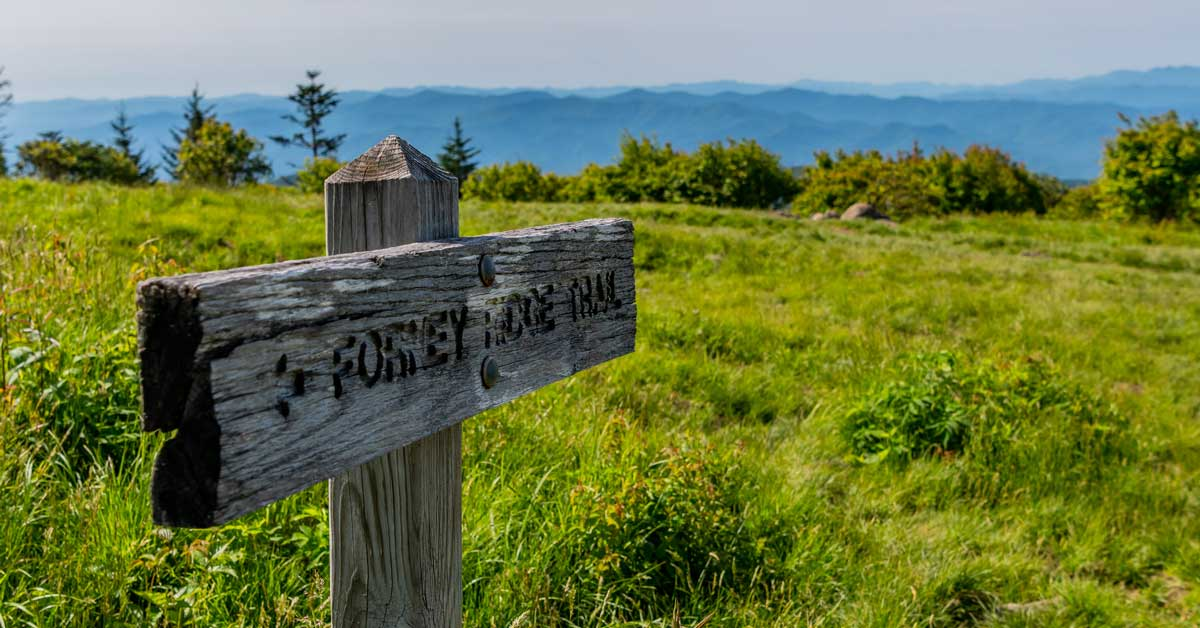 Click to open Andrews Bald: An Easy Hike From Clingmans Dome post