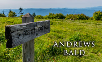 Click to view post: Andrews Bald: An Easy Hike From Clingmans Dome