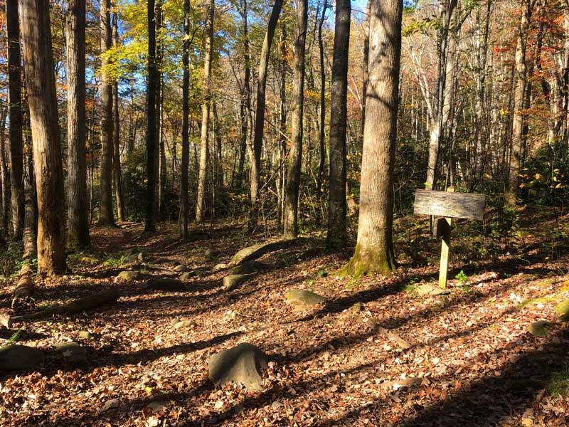Anthony Creek Trail
