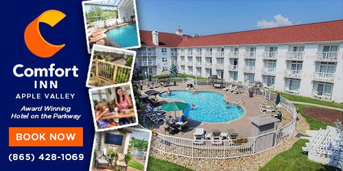 Ad - Comfort Inn Apple Valley: Click for website