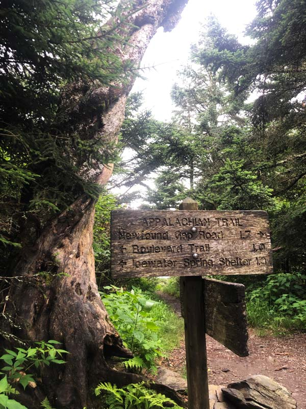 AT sign with directions to Icewater Shelter, Newfound Gap Rd, & The Boulevard Trail