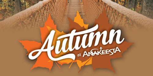 Autumn At Anakeesta: Click to visit page.