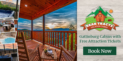 Ad - Bear Tracts Vacation Cabins: Click for website