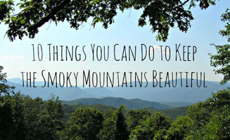 Keep The Smokies Beautiful!: Click to read more.