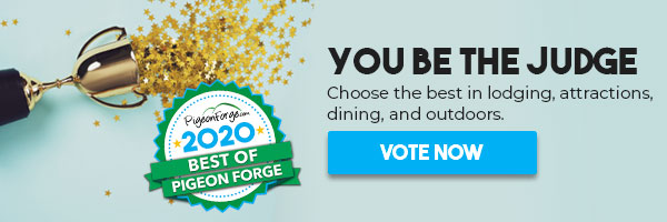You be the judge. Choose the best in lodging, attractions, dining, and outdoors. Click to vote now.
