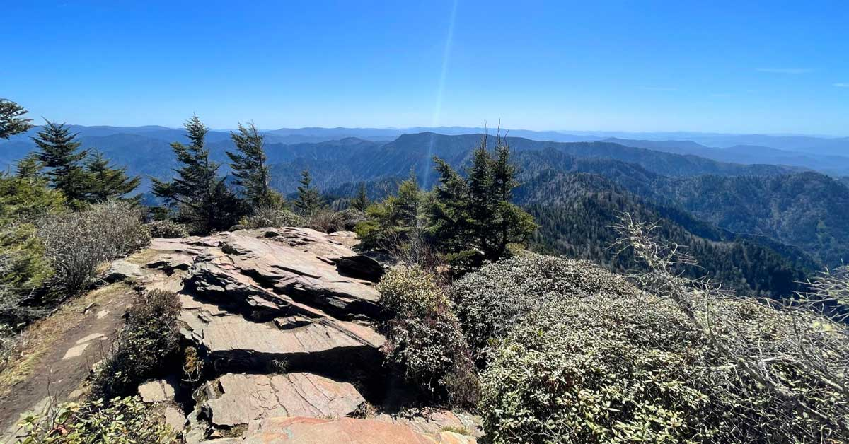 Click to open The Boulevard Trail to Mt. LeConte post