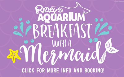 Breakfast With A Mermaid