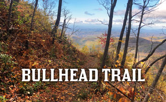 Bullhead Trail: 5.9 Miles Downhill From LeConte Lodge: Click to read more