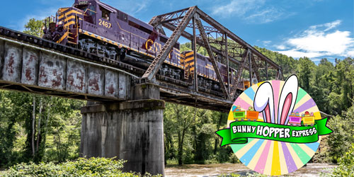 Bunny Hopper Express: Click to visit page.