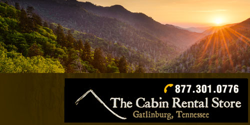 Ad - The Cabin Rental Store: Click for website