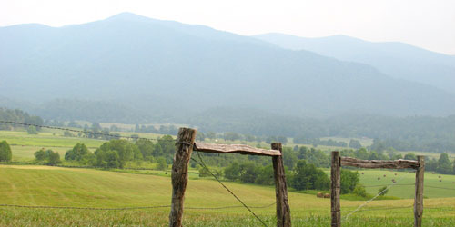 Cades Cove Info: Click to visit page.