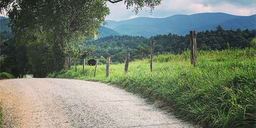 Cades Cove: Click to visit page.