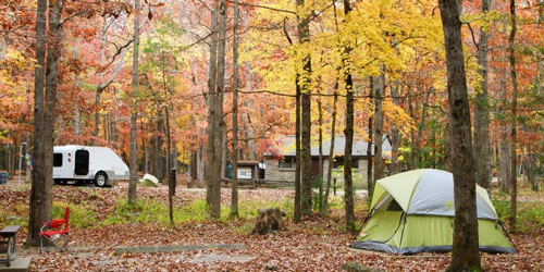 Reserve Cades Cove Campground: Click to visit page.