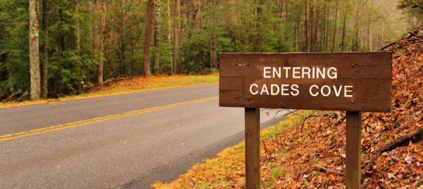 Cades Cove: History & Visitor Information: Click to read more.