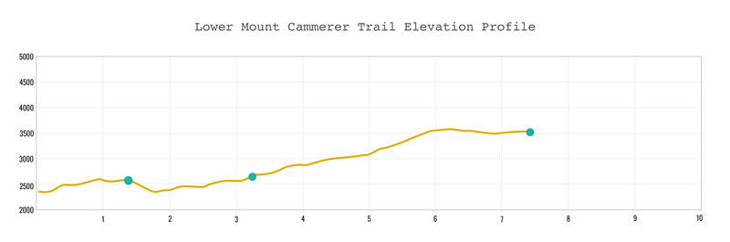 Lower Mt. Cammerer Trail