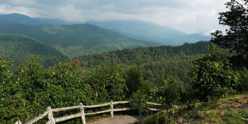 Reserve Cataloochee Campground: Click to visit page.