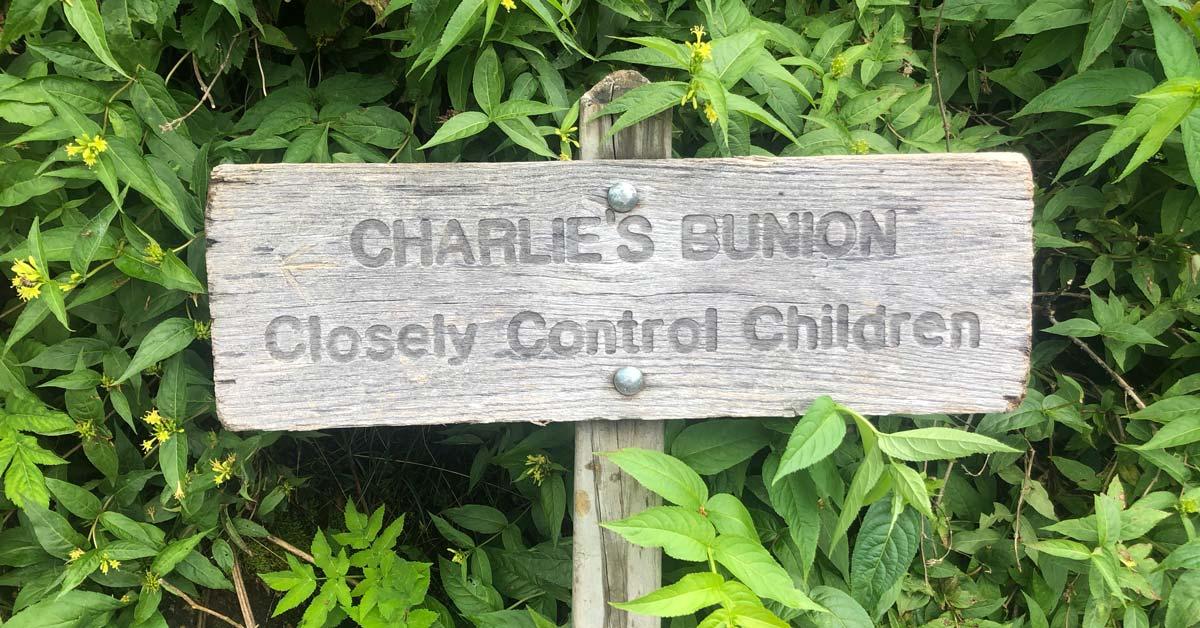 Charlies Bunion via Kephart Prong Loop