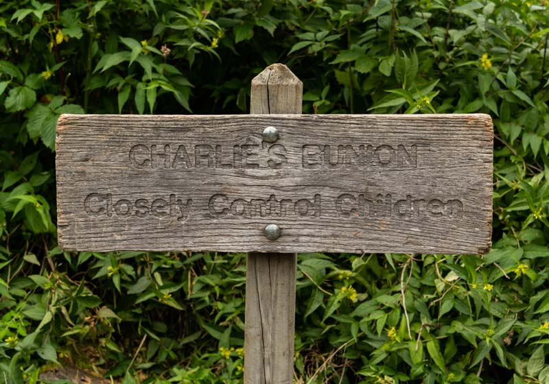 sign says Charlies Bunion: Closely Control Children