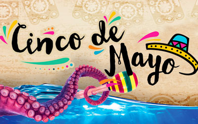 Cinco De Mayo at Ripley's: Click for event info.