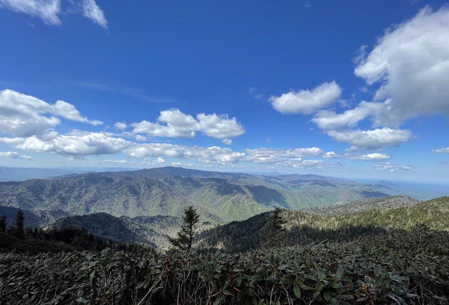 Alum Cave Trail (Mt. LeConte)