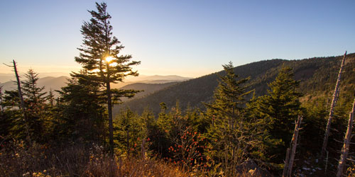 Hikes For Beginners: Click to visit page.