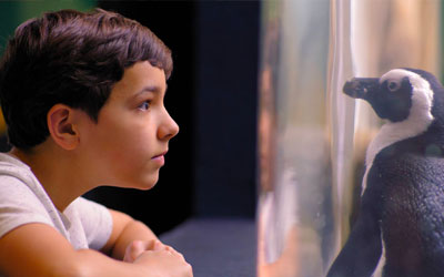 Ripley's Expedition Camps: Click for event info.