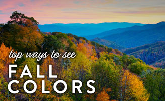 Top Ways to See Fall Colors in the Smokies: Click to read more