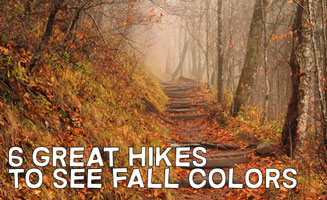 Top Hikes to See Fall Colors in the Smoky Mountains