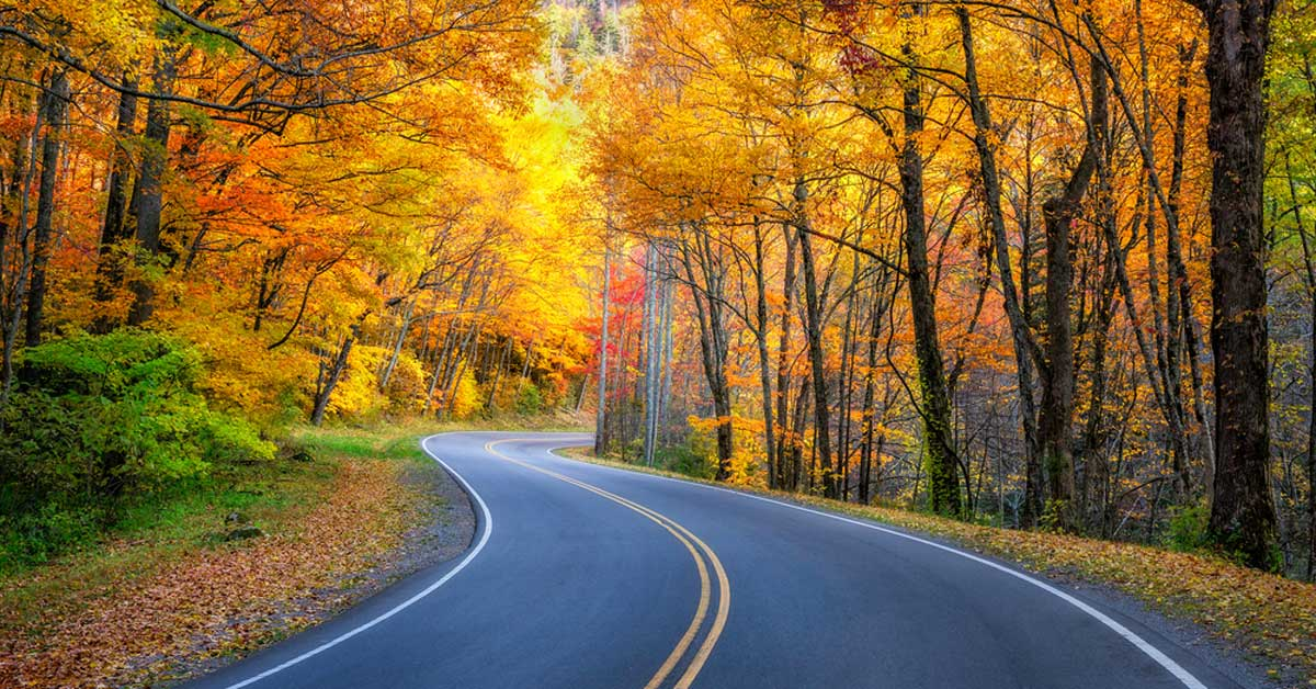 Best Fall Drives In The Smokies Pigeonforge Com