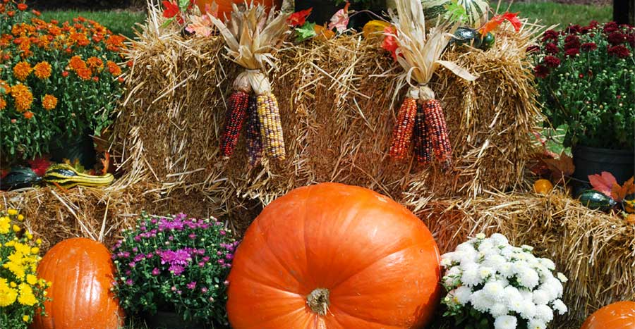 Pigeon Forge fall decorations