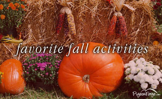 What Is Your Favorite Fall Activity?